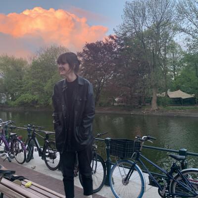 Kayleigh zoekt een Appartement / Huurwoning / Kamer / Studio in Haarlem